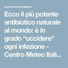 """Ecco il più potente antibiotico naturale al mondo: è in grado """"uccidere"""" ogni infezione - Centro Meteo Italiano"""