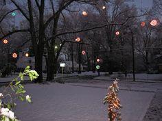 Lighted Christmas Balls. Greensboro, NC