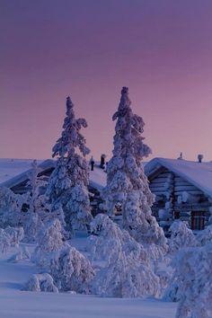 A WINTER WONDER-LAND:-)