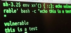 How to Exploit Shellshock-Vulnerable Websites with Just a Web Browser « Null Byte