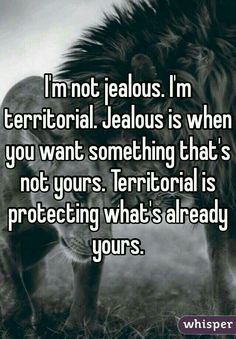 I'm not jealous. I'm territorial.  Jealousy is when you want something that's not yours. Territorial is protecting what's already yours.