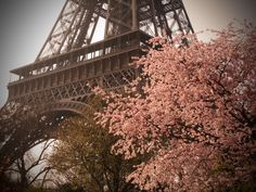 Paris in the spring