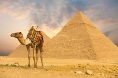 A breath-taking country packed-full of ancient history, majestic monuments and breath-taking scenery – Egypt's eclectic mix of sights and sounds make it the perfect destination for a truly memorable adventure…