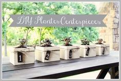 Planter Centerpieces DIY Project