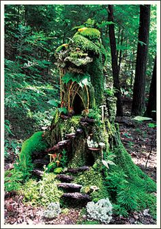 1000 Images About Fairy House Tree Stump On Pinterest
