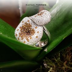 Tiempo de Navidad, época de compartir, momento de ser felices. #joyas #diamantes #RafaelTorresJoyero