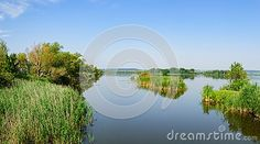 Calm surface of lake Kis-Balaton surrounded with lush vegetation in bright summer day, Heviz, Hungary.