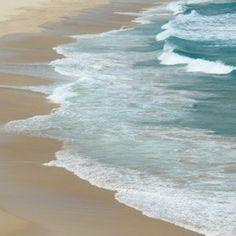 Captiva Island has secluded public beaches home to many shore birds.