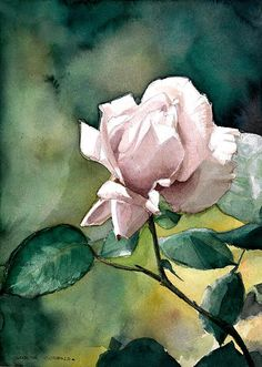 Rose In Lilac Painting