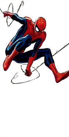 Spider-Man by Lee Weeks