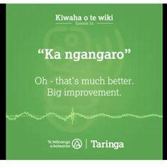 Ideas, Maori, Thoughts