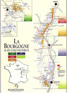 Bourgogne or Burgundy Wine Region of France Burgundy Wine Map, Guide Vin, Wine Paring, Wine Vine, Wine Folly, Wine Education, Wine Cocktails, French Wine, In Vino Veritas