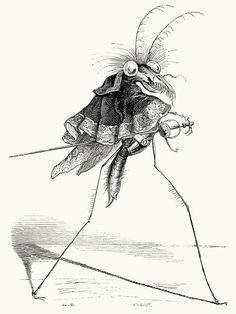 The misocampe Wasp. J-J. Grandville, from Vie privée et publique des animaux (Public and Private Life of Animals), under the direction of P. J. Stahl, Paris, 1867.