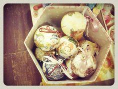 )))) Yellow Shop, Breakfast, Food, Morning Coffee, Meals, Yemek, Eten
