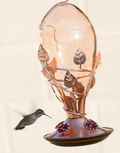 """Love this """"Love Hummingbirds?  We do too :) You'll love this Beautiful Copper Hummingbird Nectar, Glass Hummingbird Feeders, Humming Bird Feeders, Cherry Valley, Copper Glass, Hummingbirds, Lovers, Beautiful, Super Easy"""