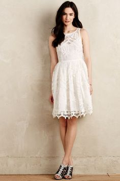 pina lace dress / anthropologie