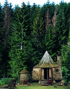 How I would love to sit in Hagrid's hut and have tea with him!!