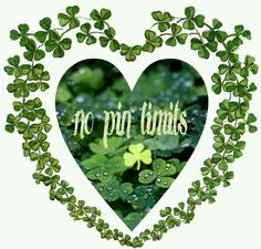 Welcome to my Boards, I have absolutely No Pin Limits on any of my Boards, so please Pin as much as you like, as often as you like, Thank you 😊 Irish Tea, As You Like, Let It Be, Erin Go Bragh, Irish Cottage, Let's Have Fun, Irish Blessing, Paddys Day, Luck Of The Irish