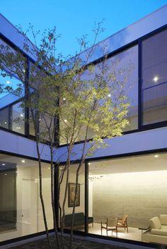 APOLLO Architects & Associates- interior courtyard instead of exterior windows