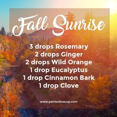 5 Must Try Fall Essential Oil Diffuser Blends - Painted Teacup Fall Sunrise Diffuser Blend Fall Essential Oils, Ginger Essential Oil, Patchouli Essential Oil, Essential Oil Diffuser Blends, Essential Oil Uses, Juniper Berry Essential Oil, Essential Oil Combinations, Diffuser Recipes, Aromatherapy Oils
