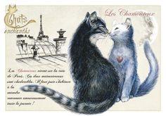 """«Les Chamoureux», par Séverine Pineaux. -- """"Les Chamoureux vivent sur les toits de Paris. Ces deux matourtereaux sont chadorables. Il faut juste s'habituer à les entendre ronronner amoureusement toute la journée !""""."""
