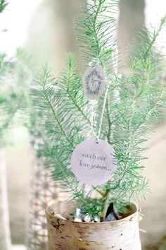 Favors for a winter wedding. How cute.