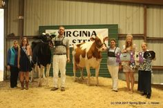 2017 Virginia Holstein Spring Show Reported By Terry Perotti 2017 Virginia Holstein Spring Show This Rockingham County, Virginia, Spring