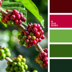 burdeos, color burdeos, combinación contrastante de colores, de color verde…
