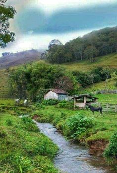 Cenas Do Interior, Country Life, Country Roads, Country Living, Brazil Tourism, Life Is Beautiful, Beautiful Places, Vie Simple, Country Scenes