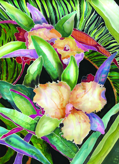 Midnight Pass a 14x20 print. Part of the Sarasota Orchid series.