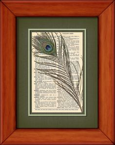Dictionary Print  Peacock Feather  6 3/4 x 9 3/4 by PagesOfAges, $7.00
