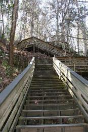 Devil's Millhopper Geological State Park - Gainesville, Florida