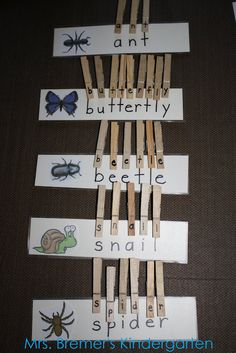 Replace words with pictures, and glue the identical picture on the clothespin for students to match.