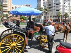 Horse carriage ride in Malaga