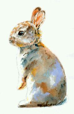 Rabbit. <3 <3