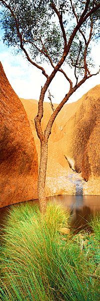 Mutitjulu in Australia's Northern Territory is an Indigenous Australian community at the eastern end of Uluru (also known as Ayers Rock). by Ken Duncan Western Australia, Australia Travel, Tasmania, Ayers Rock, Rio, New Zealand, Places To See, The Good Place, Beautiful Places