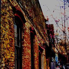 Old bricks have so much character... Savannah, GA#Savannah and #NoBoysAllowed