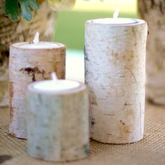Maybe for table decor? Rustic Log Tea Light Candle Holders by Beau-coup