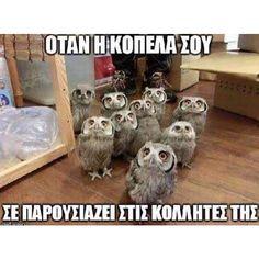 #greekpost #greekquotes #ελληνικα #στιχακια #greek_funny_quotes #edita
