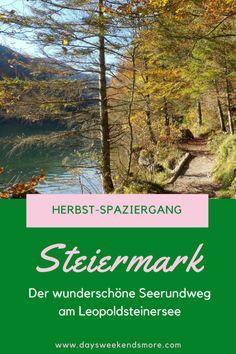 November, Sport, Plants, Graz, Road Trip Destinations, Camera, November Born, Deporte, Sports