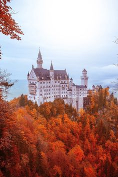 My Interest - banshy: Neuschwanstein Castle // Muharrem Ünal Places To Travel, Places To See, Wonderful Places, Beautiful Places, Linderhof, Neuschwanstein Castle, Destination Voyage, Beautiful Castles, All Nature