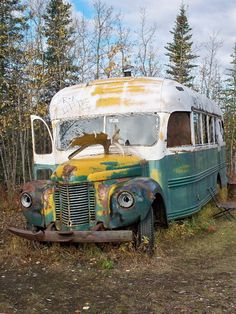Into the Wild tells of Chris McCandless and his Alaskan odyssey. The movie was great but very tragic.