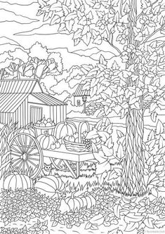 Autumn Harvest - Printable Adult Coloring Page from Favoreads (Coloring book pages for adults and kids, Coloring sheets, Coloring designs) Fall Coloring Pages, Adult Coloring Book Pages, Coloring Books, Free Adult Coloring, Printable Adult Coloring Pages, Mandala Coloring, Colorful Pictures, Autumn Harvest, Illustration
