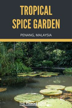The Tropical Spice Garden in Penang is an amazing place to experience more than 500 plant species and a whole host of herbs and spices. Malaysia Travel, Malaysia Penang, Spice Garden, Asian Street Food, Asian Market, Malaysian Food, Plant Species, Travel Around The World, Places To Travel