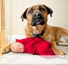 pet-and-newborn-photography