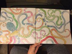 Millie Marotta - Octo the octopus