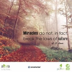 "#Quoteoftheday: ""Miracles do not, in fact, break the laws of nature."" C.S Lewis. Let's stay with us and protect ‪#‎environment‬. www.amaherbal.com ‪#‎EcoFriendly‬ ‪#‎InspirationalQuotes‬ ‪#‎Quotes‬ ‪#‎livegreen‬ ‪#‎GoGreen ‬‪#‎Photooftheday‬ ‪#‎Picoftheday‬ ‪#‎naturelovers‬ ‪#‎landscape‬ ‪#‎beauty‬ ‪#‎picture‬‪ #‎winter‬"