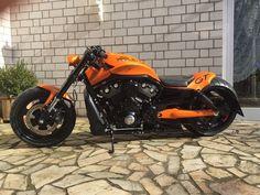Awesome custom bike Harley Davidson V Rod by Custom Harleys, Custom Motorcycles, Custom Bikes, Blue Motorcycle, Moto Bike, Motorcycle Gear, Harley Night Rod, Vrod Harley, Harley Davidson Trike
