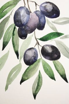 Olive branch original watercolor illustration food original | Etsy Art And Illustration, Watercolor Illustration, Illustrations, Watercolor Fruit, Watercolor Flowers, Fruit Art, Watercolour Painting, Watercolor Artists, Painting Art