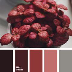 Color palettes red color palettes and pomegranates on - Living room color palette generator ...
